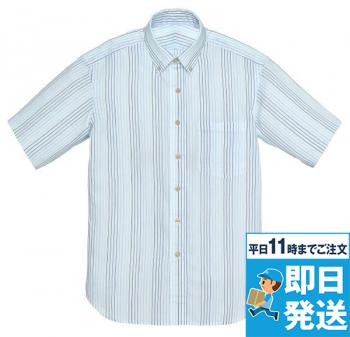 半袖シャツ(ストライプ)