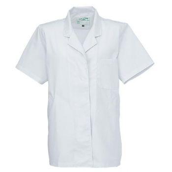 飲食 半袖 調理白衣(女性用)