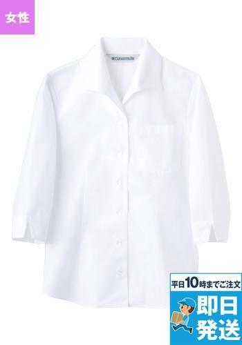 七分袖 シャツ(女性用)