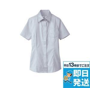 シャツ(半袖)[女]