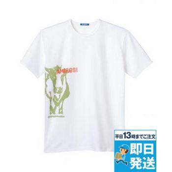 Tシャツ[兼用]