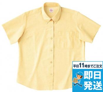 レディース半袖オックスBDシャツ