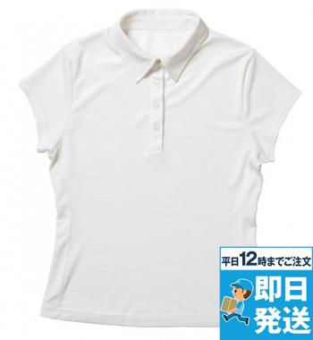 レディースフレンチスリーブシャツカラー