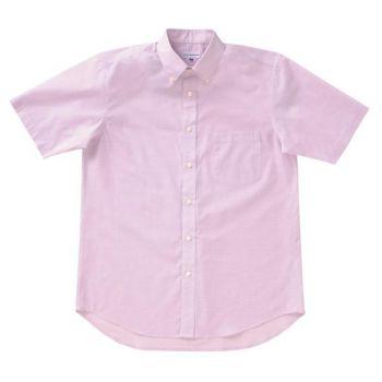 [クロダルマ]ボタンダウン半袖シャツ T